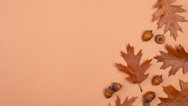 Vista superior de folhas monocromáticas com espaço de cópia