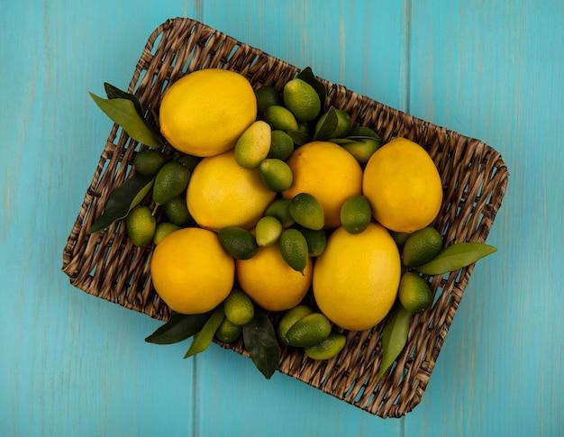 Vista superior de frutas cítricas, como kinkans e limões em uma bandeja de vime em uma parede de madeira azul