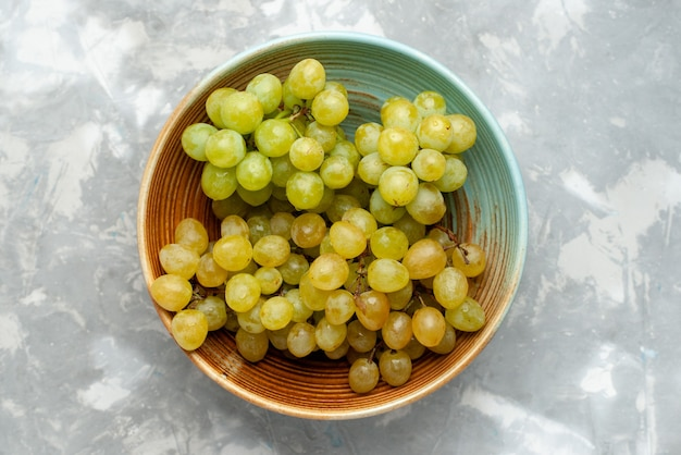 Vista superior de frutas frescas de uvas verdes dentro do prato em luz cinza, frutas suculentas maduras