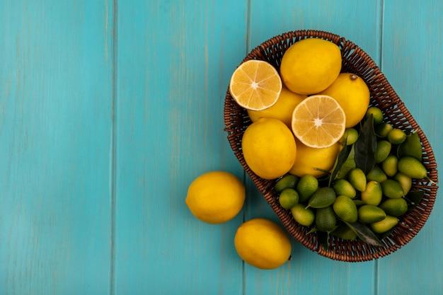 Vista superior de frutas saudáveis, como limões e kinkans em um balde com limões isolados em uma parede de madeira azul com espaço de cópia