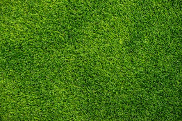 Vista superior de grama verde.