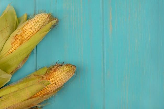 Vista superior de grãos orgânicos e saudáveis com cabelo em uma mesa de madeira azul com espaço de cópia