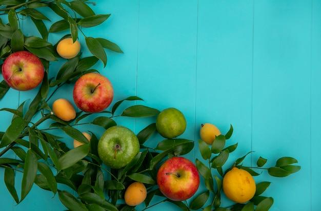 Vista superior de maçãs verdes e vermelhas com folhas de limão e damascos em uma superfície azul clara
