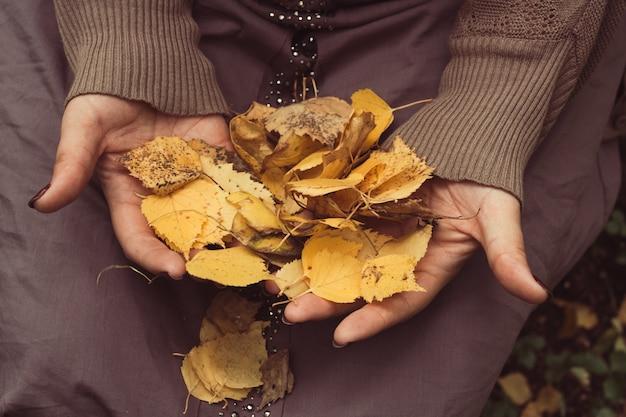 Vista superior de mãos de mulher com folhas de outono amarelas