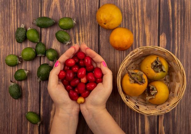 Vista superior de mãos femininas segurando cerejas frescas da cornalina com frutas frescas de caqui em um balde com feijoas isoladas em uma parede de madeira