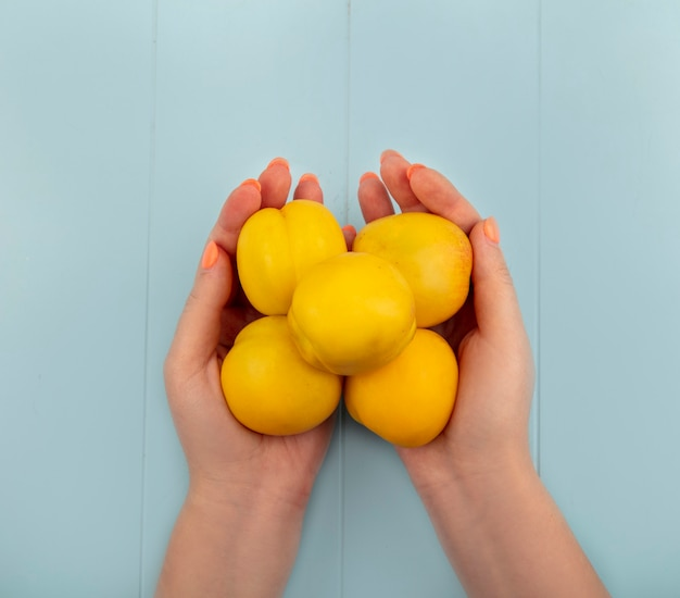 Vista superior de mãos femininas segurando deliciosos pêssegos amarelos frescos em um fundo azul