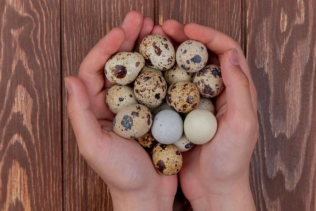 Vista superior de mãos femininas segurando ovos de codorna com conchas de cor creme em um fundo de madeira