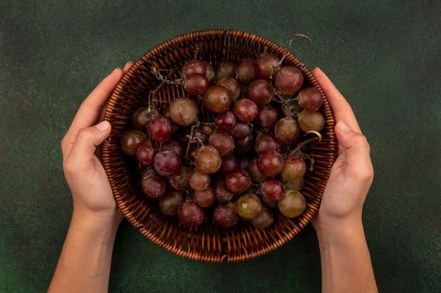 Vista superior de mãos femininas segurando um balde de uvas frescas e saudáveis em uma superfície verde