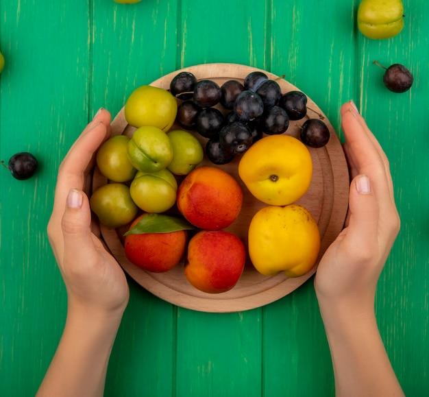 Vista superior de mãos femininas segurando uma placa de cozinha de madeira com frutas coloridas, como ameixas de pêssego-loescherry em um fundo verde
