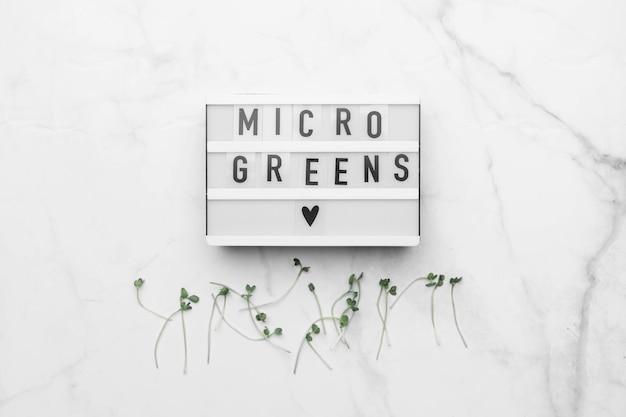 Vista superior de microgreens na mesa de mármore branco. conceito de superalimento saudável.