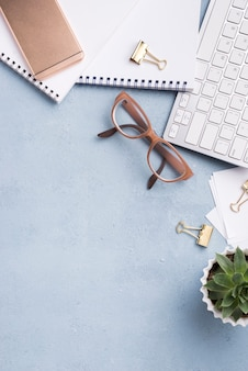 Vista superior de notebooks com teclado e planta suculenta
