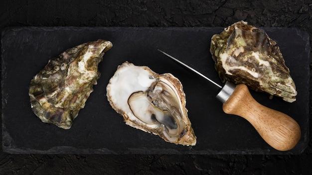 Vista superior de ostras com faca
