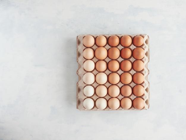 Vista superior de ovos marrons em uma bandeja de embalagem de papelão com cores gradientes
