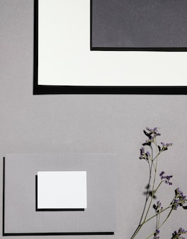 Vista superior de papel de carta com plantas