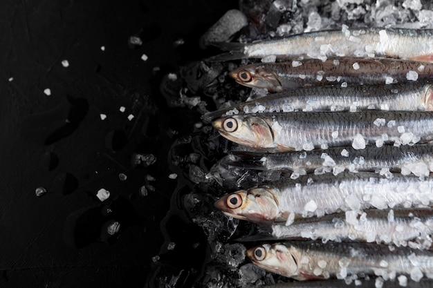 Vista superior de peixes pequenos com gelo