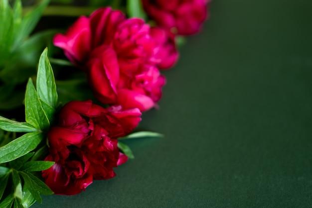 Vista superior, de, peônias, flores