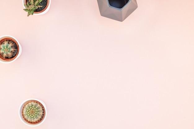 Vista superior, de, pequeno, panelas, com, decorativo, cactuses