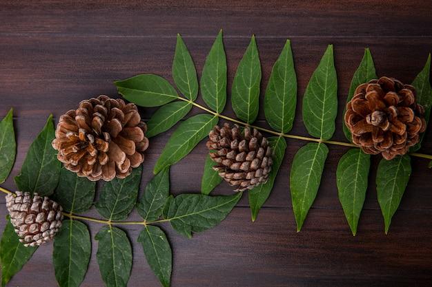 Vista superior de pinhas secas e decorativas com folhas na madeira