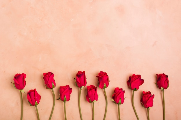 Vista superior de rosas da primavera com espaço de cópia