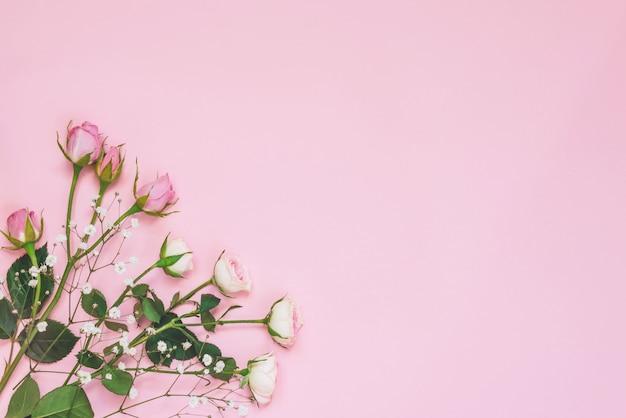 Vista superior de rosas rosa em fundo rosa. copie o espaço.