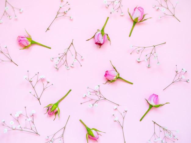 Vista superior de rosas rosa em fundo rosa. floral abstrato