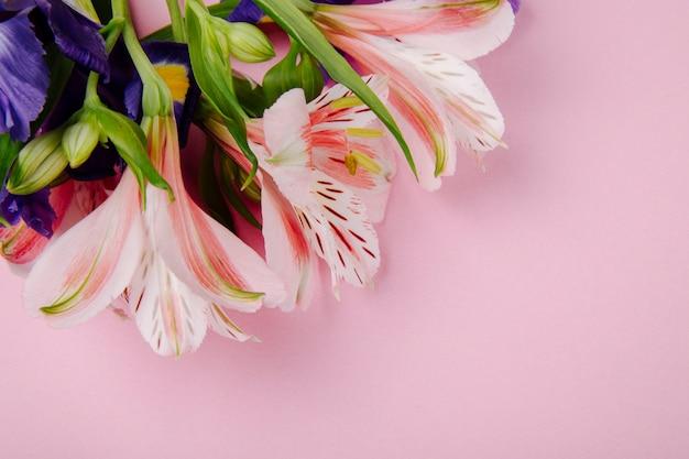 Vista superior de um buquê de flores de íris e alstroemeria de cor roxa e rosa escura sobre fundo rosa com espaço de cópia