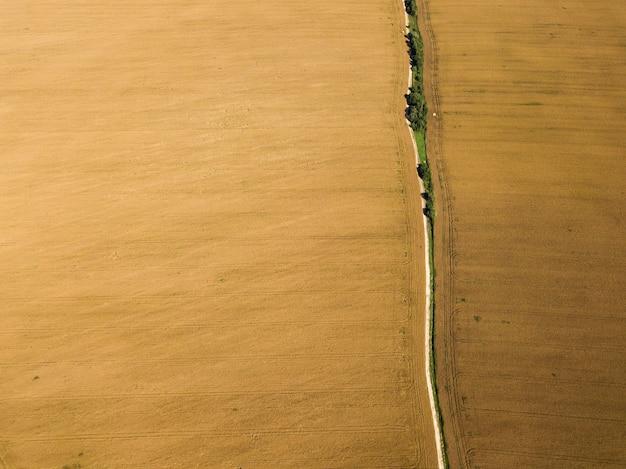 Vista superior de um campo dourado de colza madura com uma estrada Foto Premium