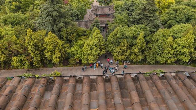 Vista superior de um grupo de pessoas na frente da casa na floresta