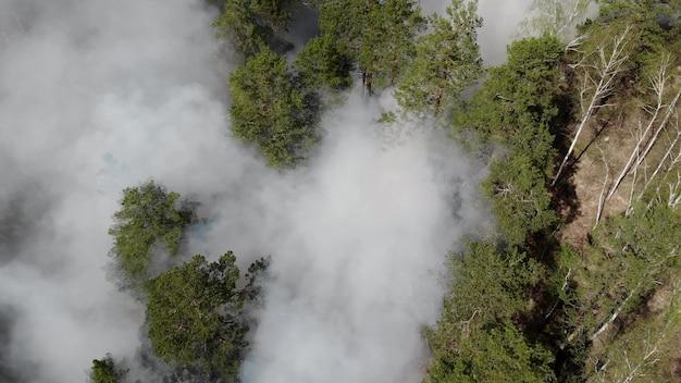 Vista superior de um incêndio florestal invencível.