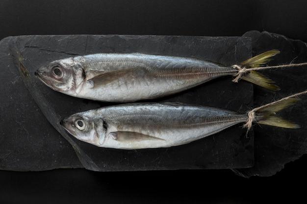 Vista superior de um par de peixes na ardósia