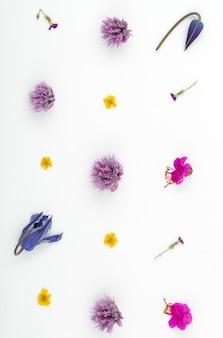 Vista superior de uma composição de flores em um fundo branco. um padrão de botões de flores de plantas de jardim e folhas de samambaia.