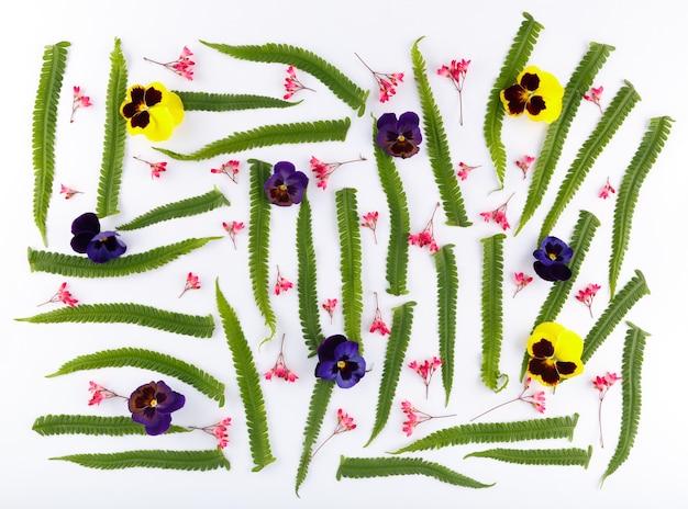 Vista superior de uma composição de flores sobre fundo branco um padrão de botões de flores de plantas de jardim