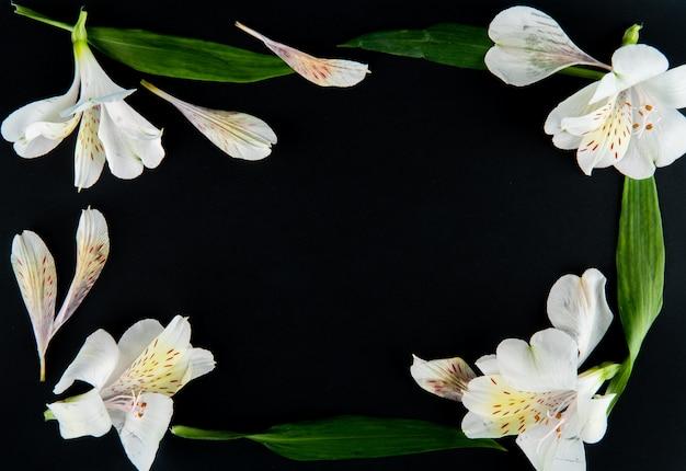 Vista superior de uma moldura feita de flores de alstroemeria cor branca sobre fundo preto, com espaço de cópia