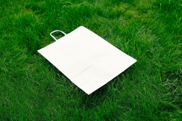 Vista superior de uma moldura feita de grama verde primavera e embalagem de papel artesanal com alças com espaç ...