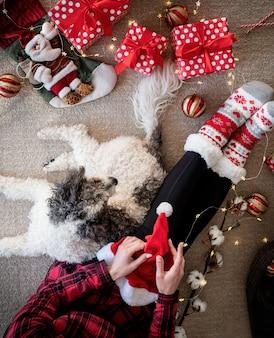 Vista superior de uma mulher com meias engraçadas comemorando o natal com seu cachorro
