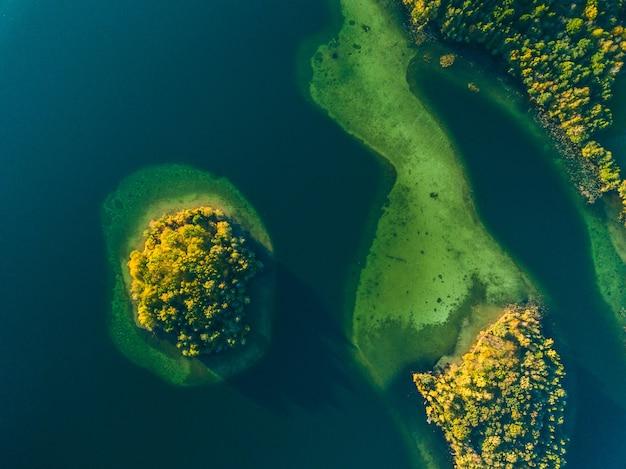 Vista superior de uma pequena ilha verde no lago verde da lituânia