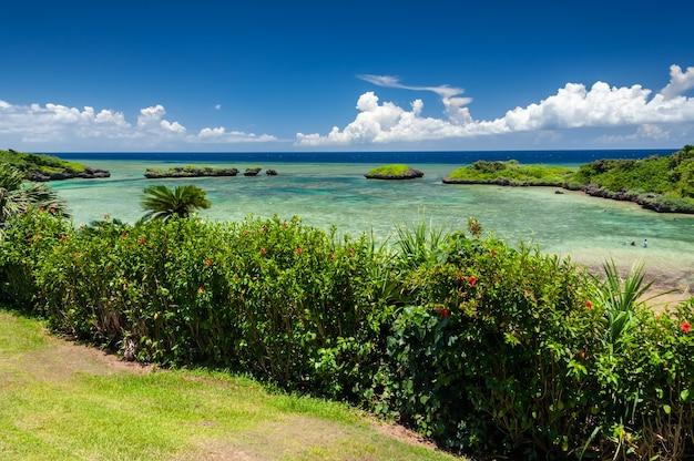 Vista superior de uma praia paradisíaca com seus hibiscos vermelho-mar verde-esmeralda entre a vegetação