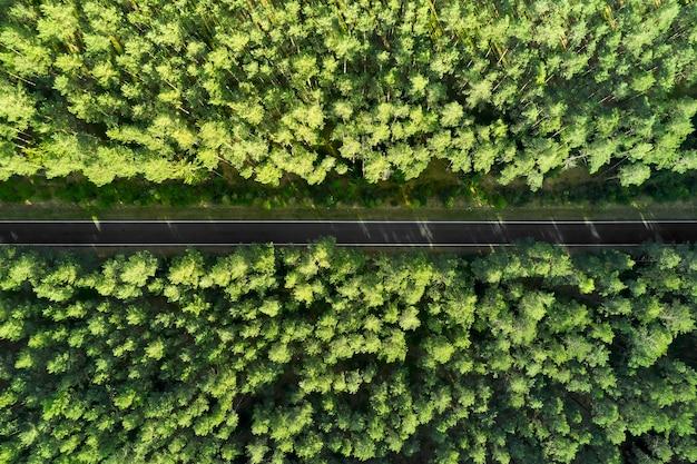 Vista superior de uma rodovia no meio da floresta