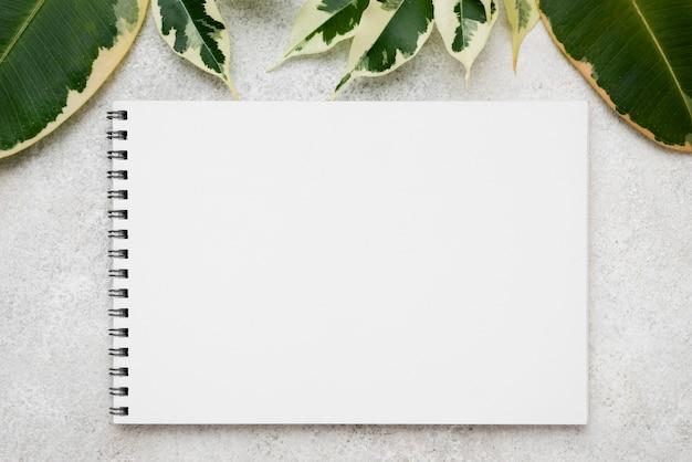 Vista superior de uma variedade de folhas de plantas com caderno