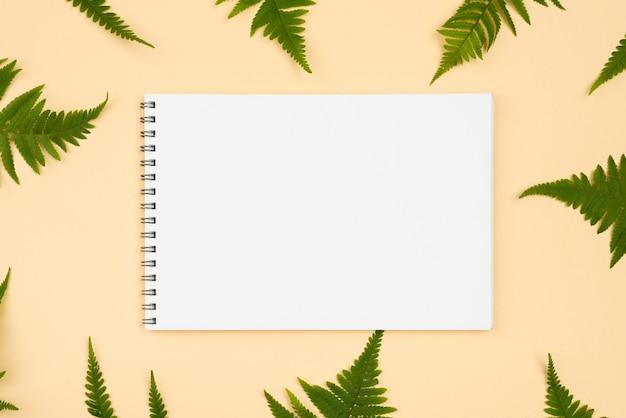 Vista superior de uma variedade de folhas de samambaia com caderno