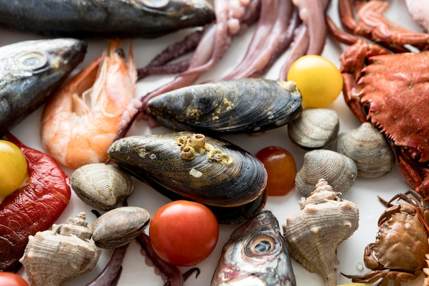 Vista superior de uma variedade de frutos do mar com mexilhões e lulas