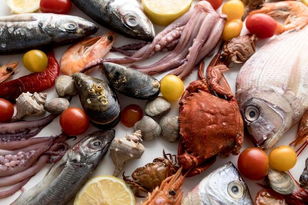 Vista superior de uma variedade de frutos do mar com tomates