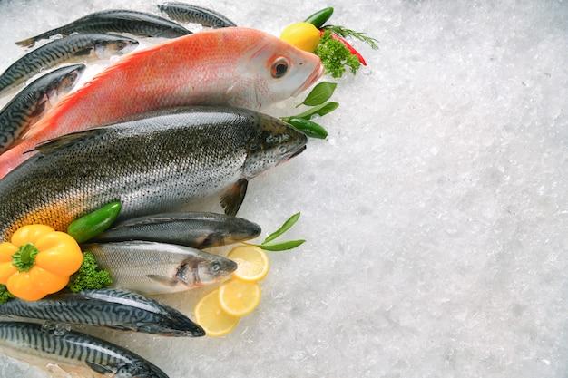 Vista superior de uma variedade de peixes frescos e frutos do mar no gelo com espaço de cópia