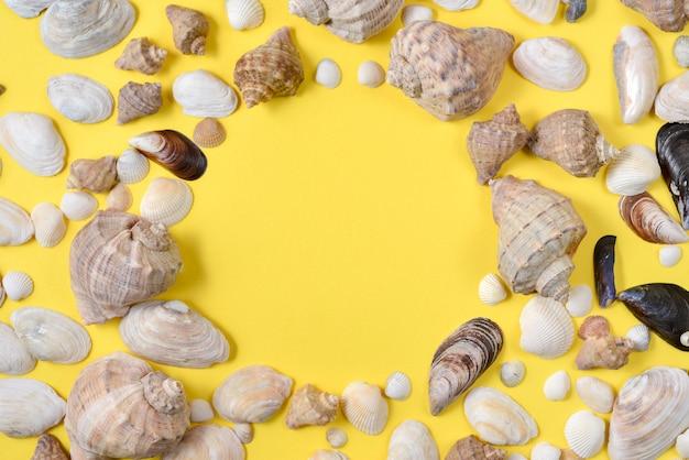 Vista superior de várias conchas do mar dos tipos no fundo amarelo.