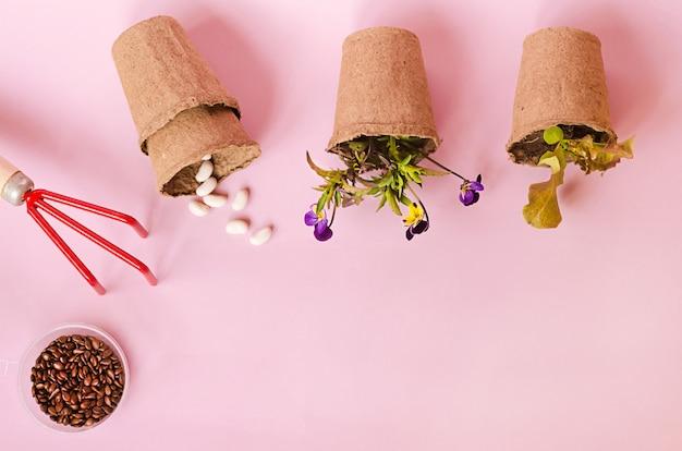 Vista superior de vasos de turfa com mudas, sementes, flores, legumes, ervas