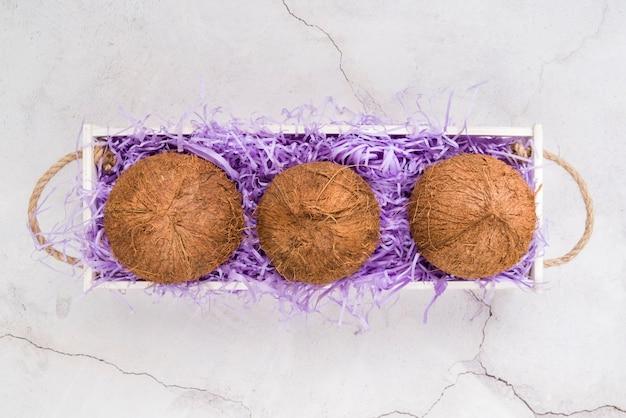 Vista superior deliciosos cocos prontos para serem servidos