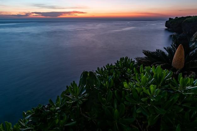 Vista superior deslumbrante da costa após o pôr do sol. mar de superfície lisa, flor de palmeira sagu, vegetação verde clara em primeiro plano.