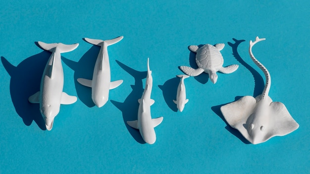 Vista superior do arranjo de animais marinhos