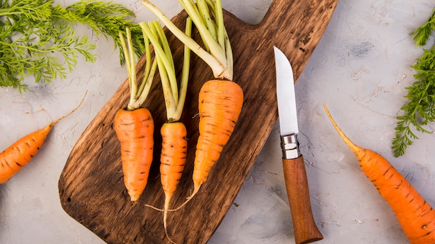 Vista superior do arranjo de cenouras