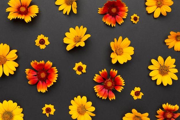 Vista superior do arranjo de flores